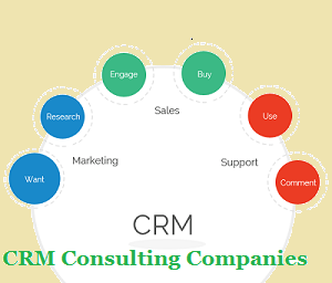 CRM Consulting Companies