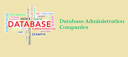 Database Administration Companies