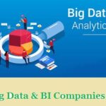 Top 15 Big Data and BI (Business Intelligence) Companies