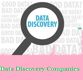 Data Discovery Companies