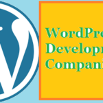 Top 10 WordPress Development Companies