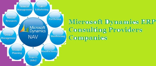 Microsoft Dynamics ERP Consulting Providers Companies