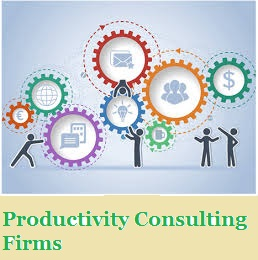 Productivity Consulting Firms