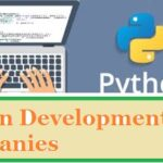 Top 10 Best Python Development Companies
